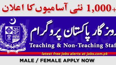 Photo of Rozgar Pakistan Program for 1000+ Vacancies in March 2020